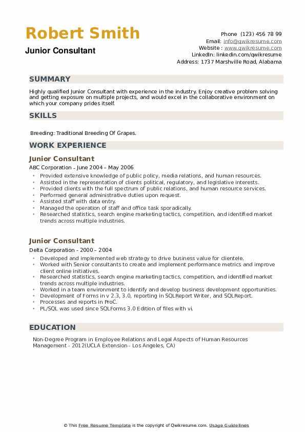 Junior Consultant Resume example