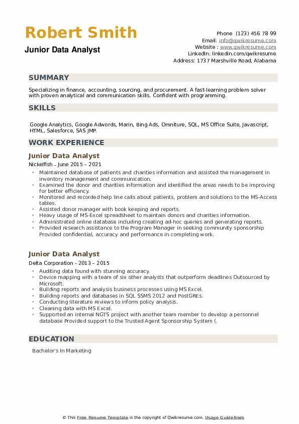 Junior Data Analyst Resume example
