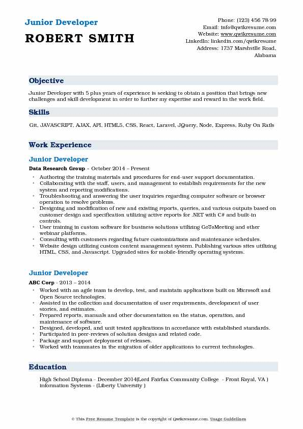Junior Developer Resume Format