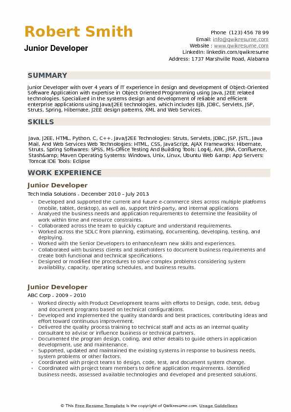 Junior Developer Resume example