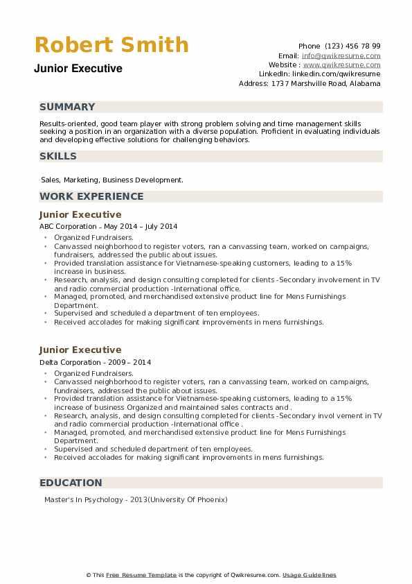 Junior Executive Resume example