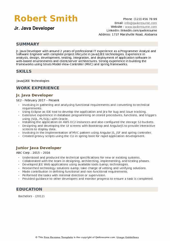 Junior Java Developer Resume example