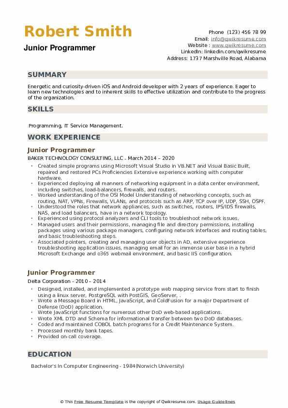 Junior Programmer Resume example
