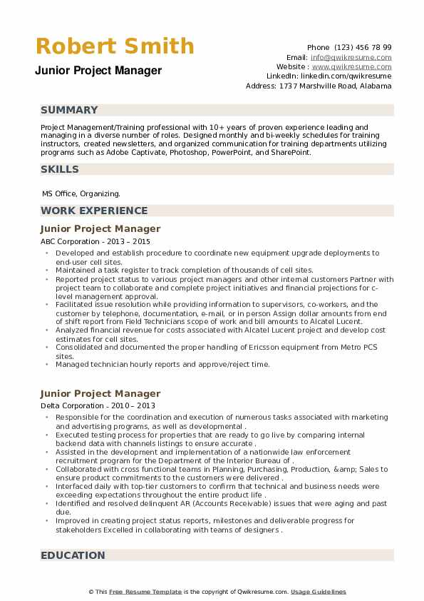 Junior Project Manager Resume example