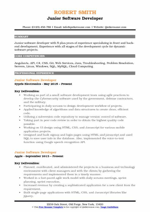 Junior Software Developer Resume Format