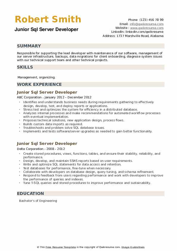 Junior SQL Server Developer Resume example