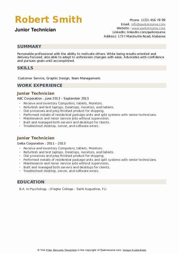 Junior Technician Resume example