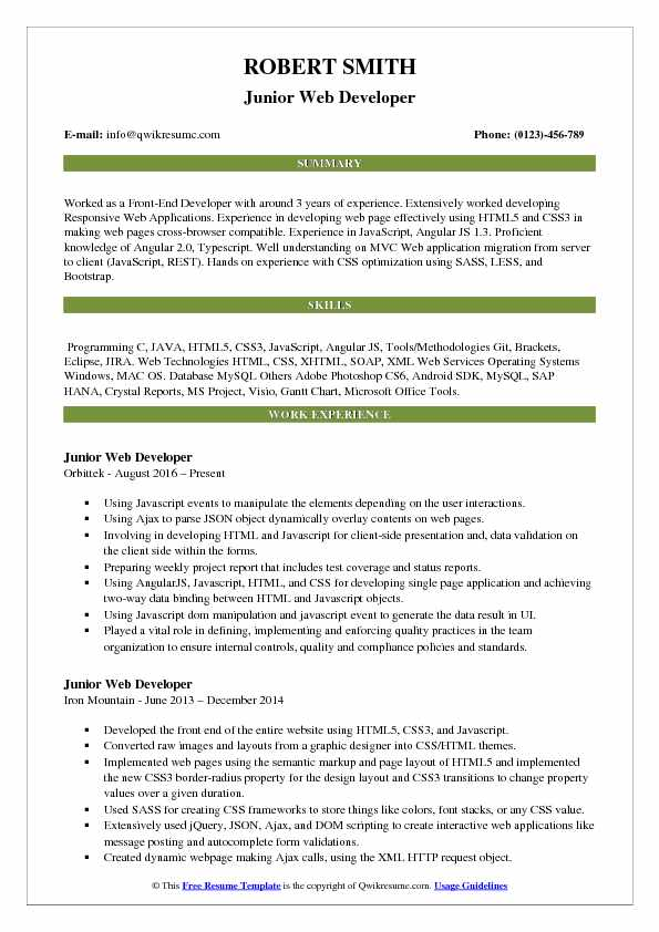 Junior Web Developer Resume Format