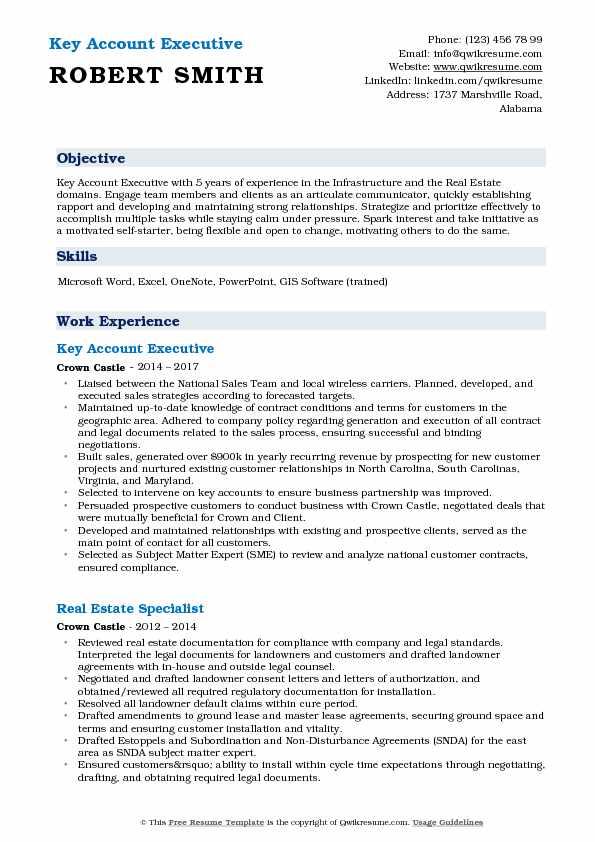 Key Account Executive Resume Model