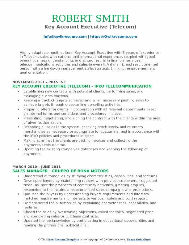 Key Account Executive (Telecom) Resume Model