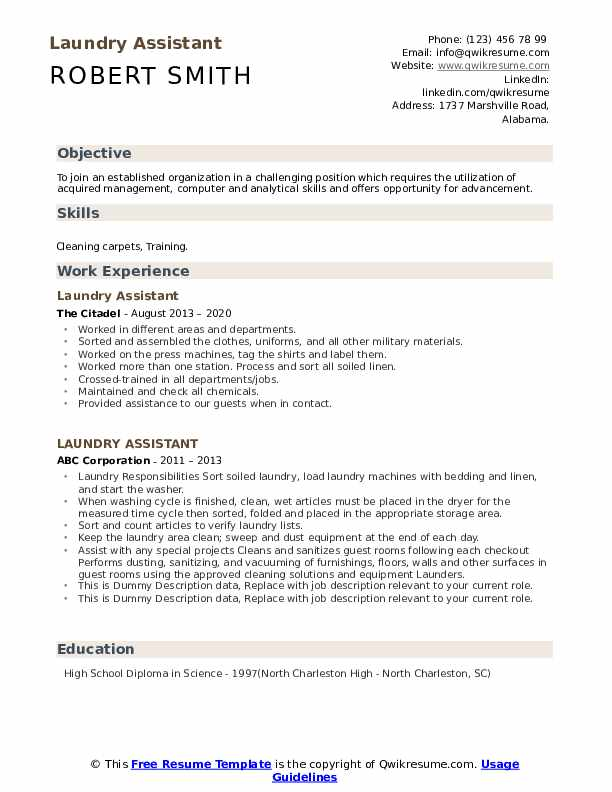 Laundry Assistant Resume example