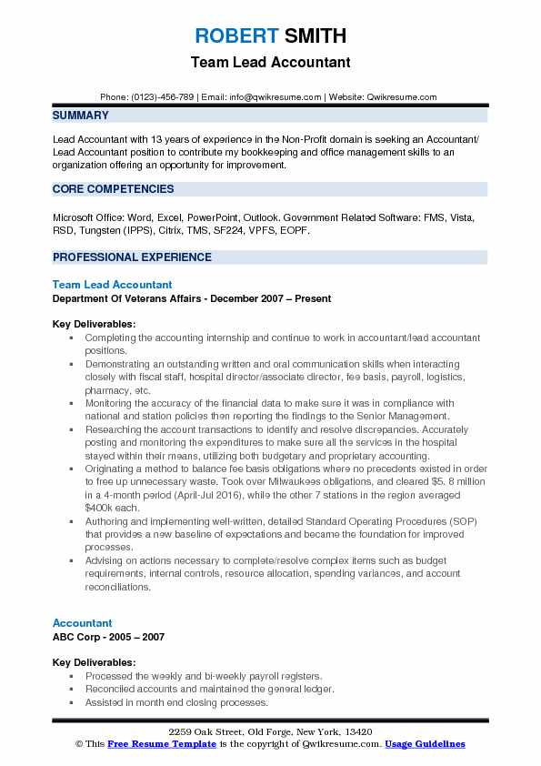 Team Lead Accountant Resume Example