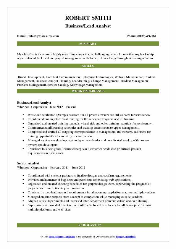 Business/Lead Analyst Resume Format