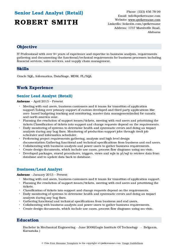Senior Lead Analyst (Retail) Resume Template