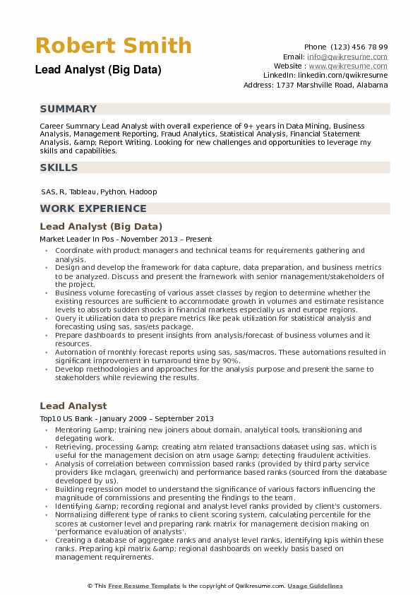 Lead Analyst Resume example