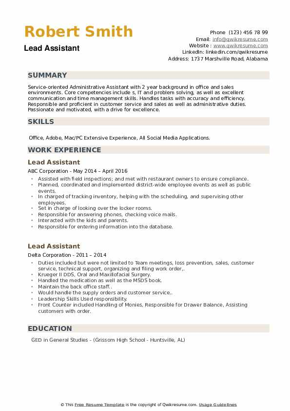 Lead Assistant Resume example