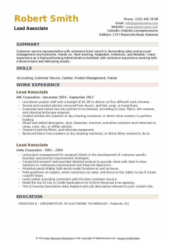 Lead Associate Resume example