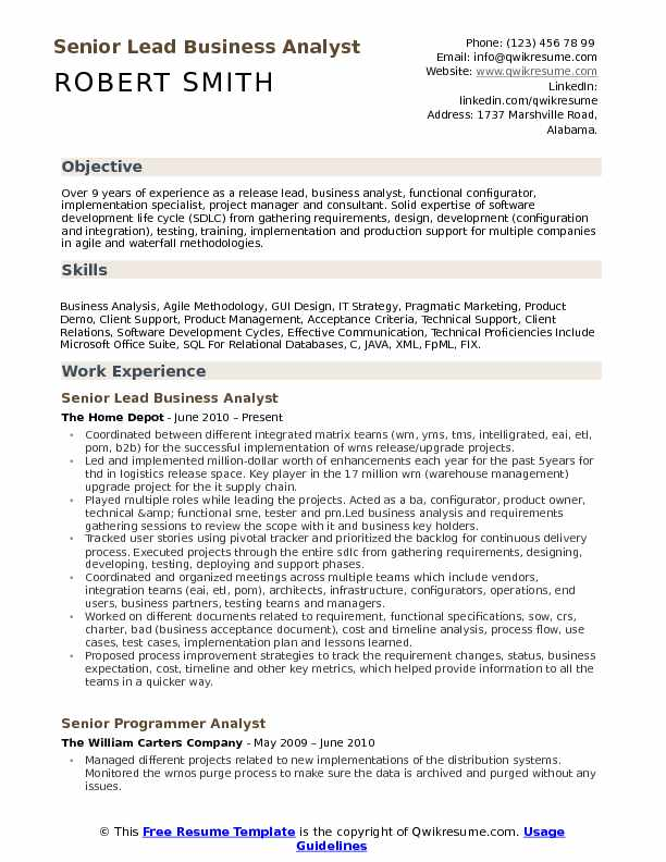 Senior Lead Business Analyst Resume Format