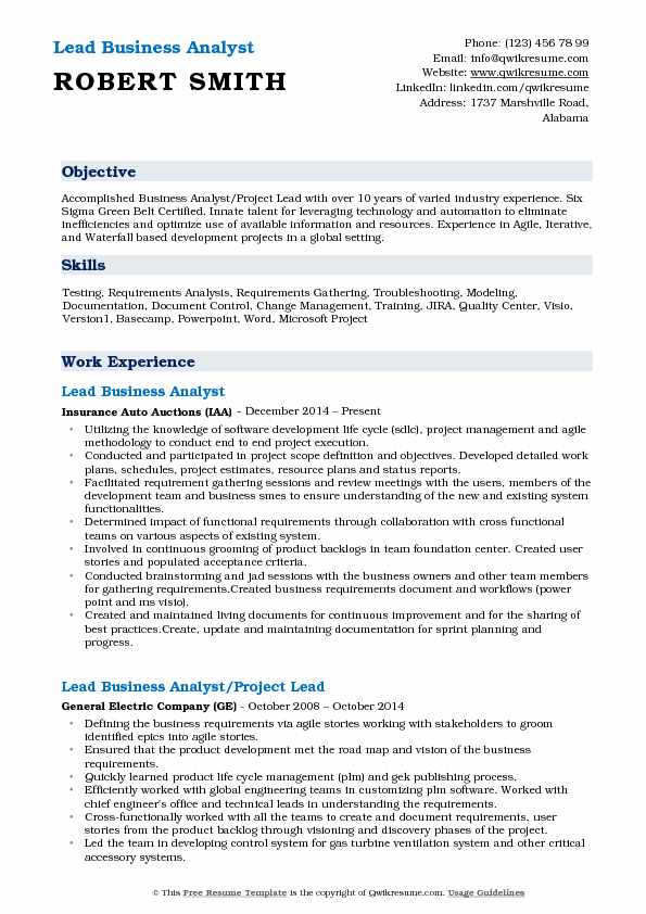 Lead Business Analyst Resume Example