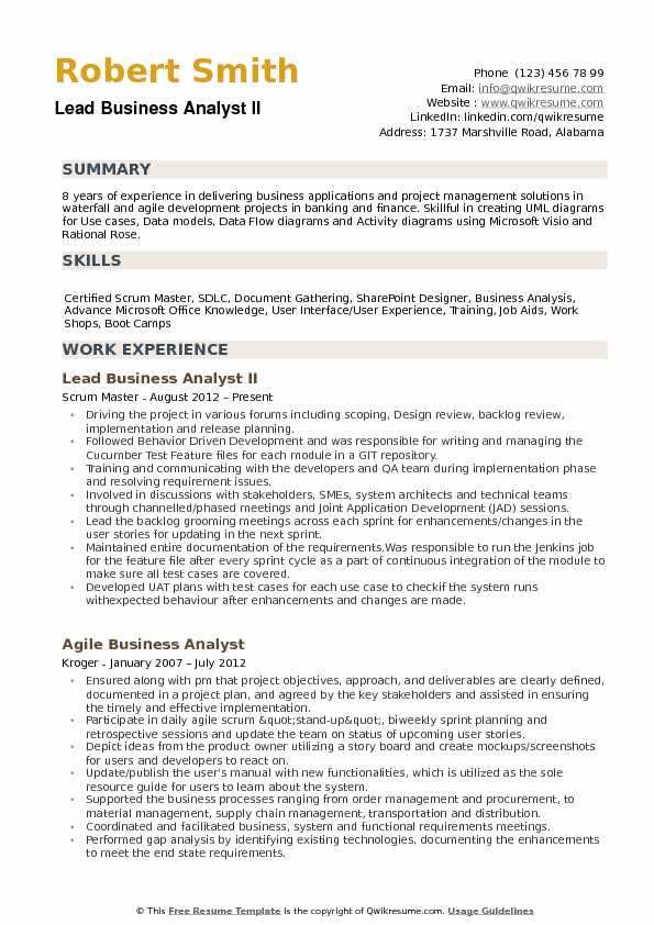 Lead Business Analyst II Resume Format