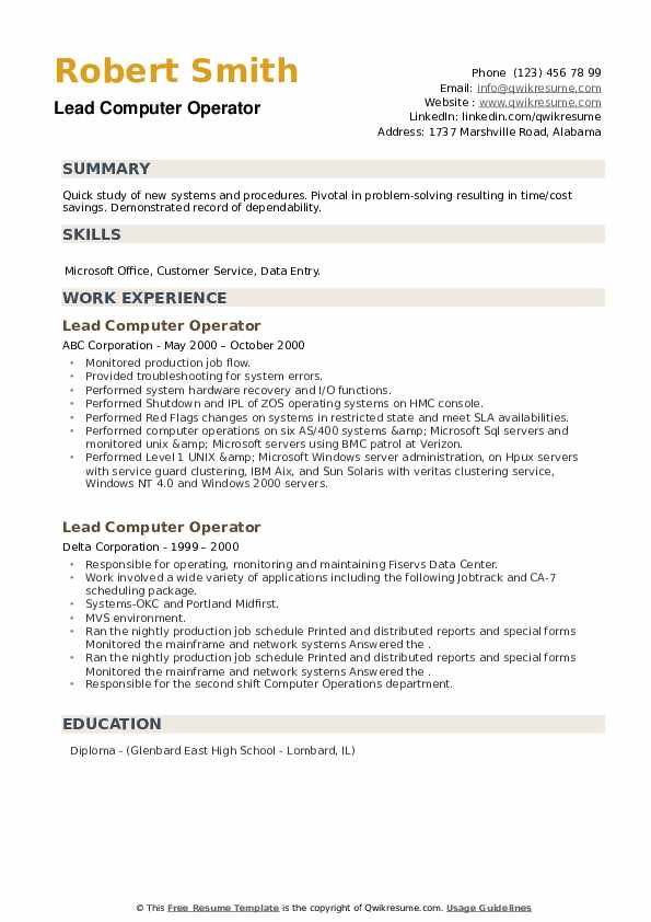 Lead Computer Operator Resume example