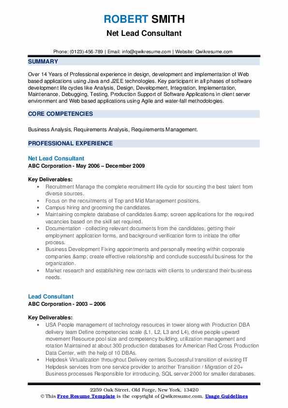 Net Lead Consultant Resume Sample