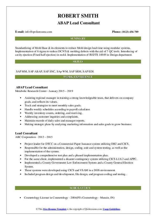 Lead Consultant Resume Samples | QwikResume