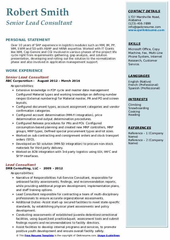 Senior Lead Consultant Resume Sample