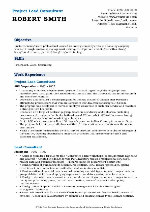 Project Lead Consultant Resume Format