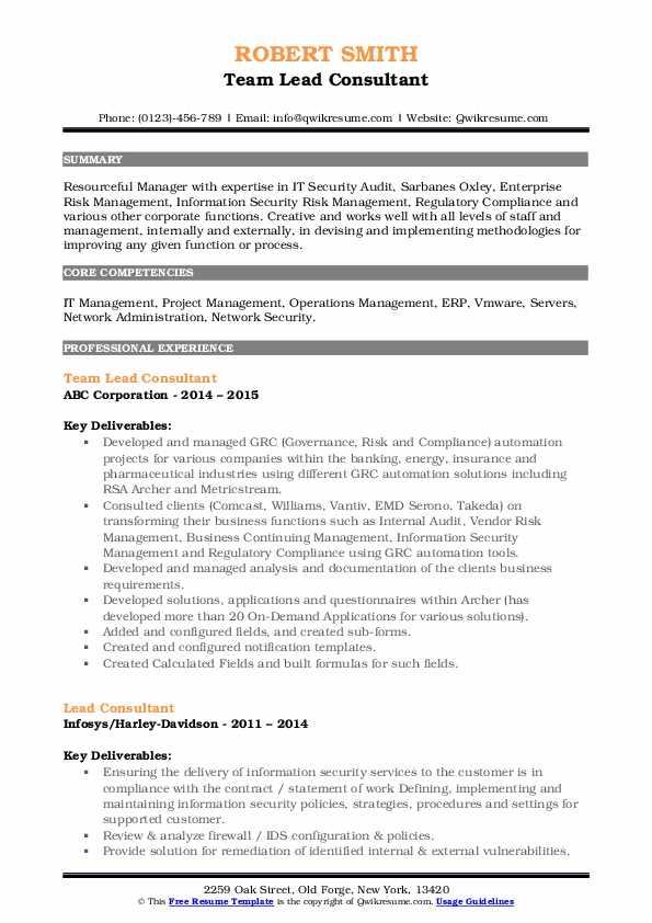 Team Lead Consultant Resume Format