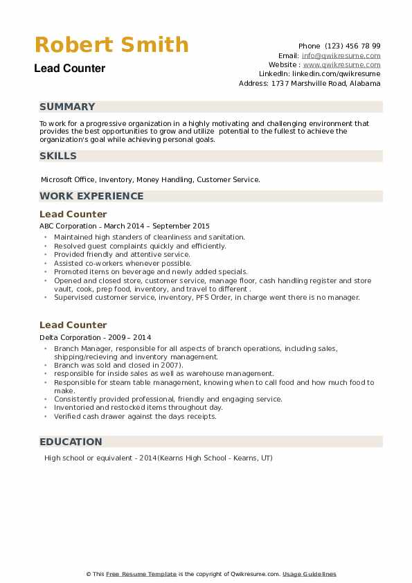 Lead Counter Resume example