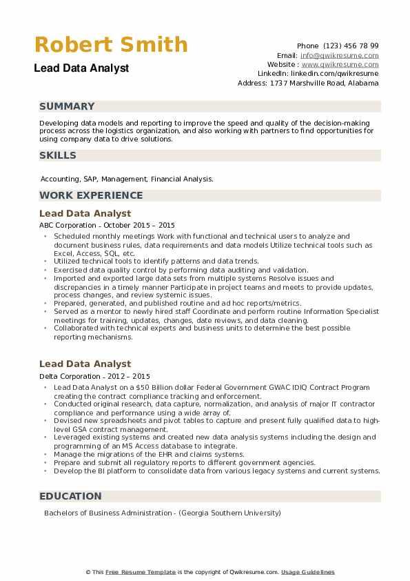 Lead Data Analyst Resume example