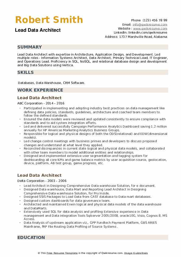 Lead Data Architect Resume example