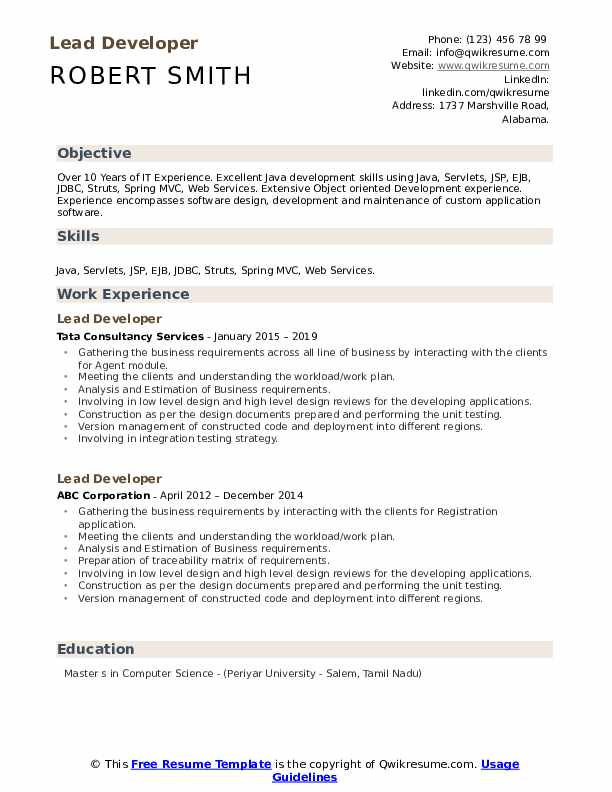 Lead Developer Resume Example