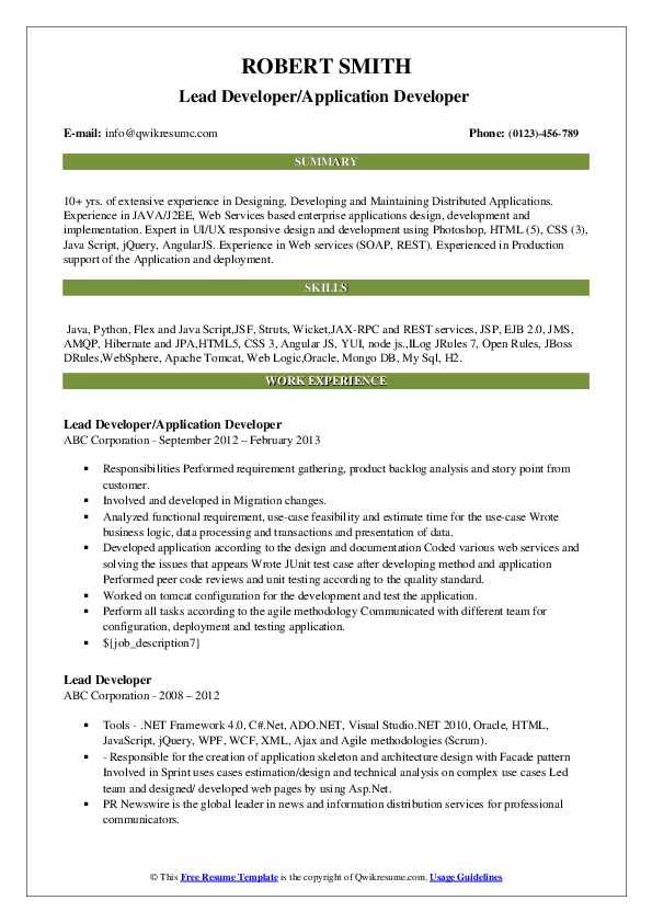 Lead Developer/Application Developer  Resume Format