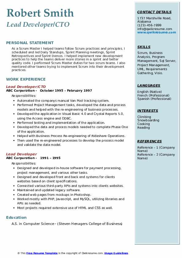 Lead Developer/CTO Resume Format