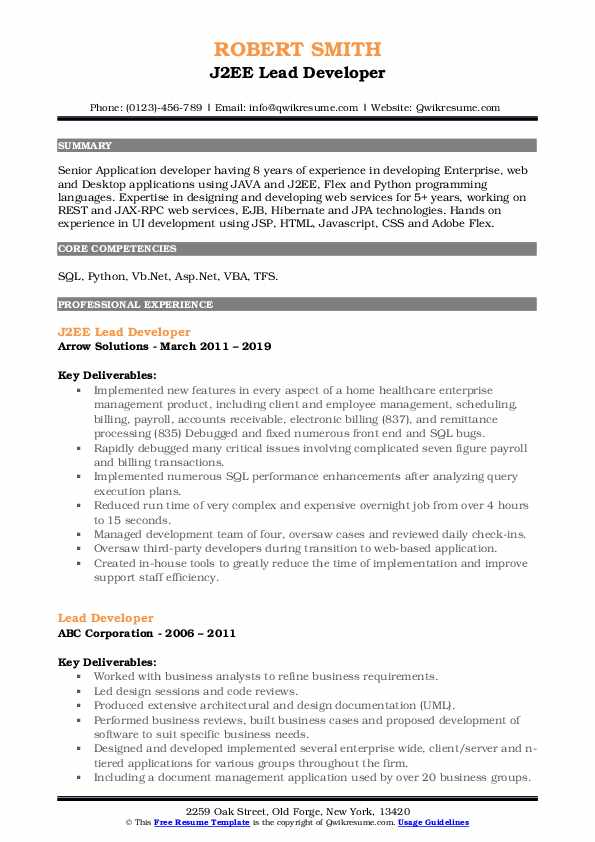 J2EE Lead Developer Resume Format