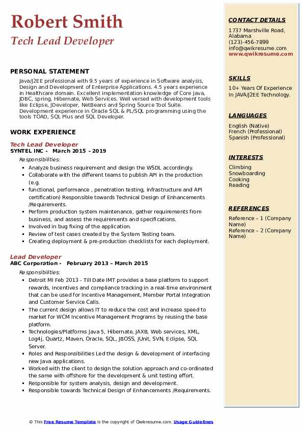 Tech Lead Developer Resume Sample