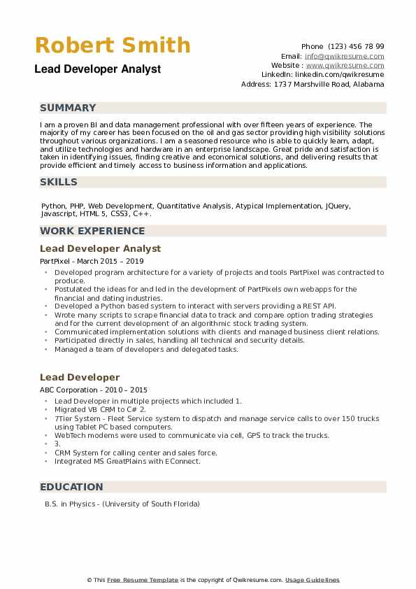 Lead Developer Analyst Resume Model