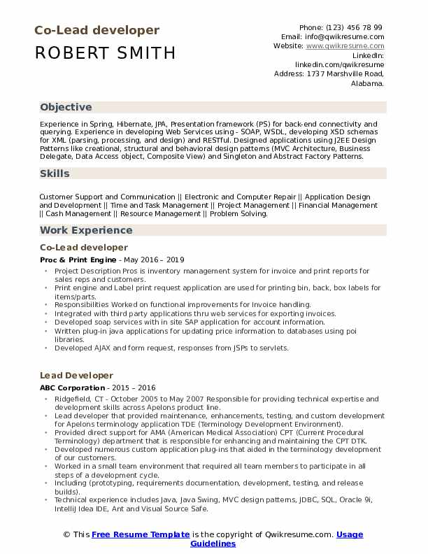 Co-Lead developer Resume Example