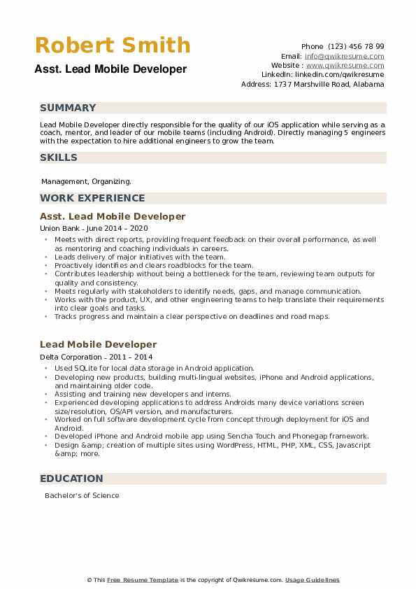 Lead Mobile Developer Resume example