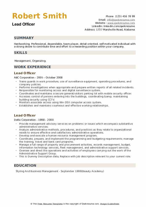 Lead Officer Resume example