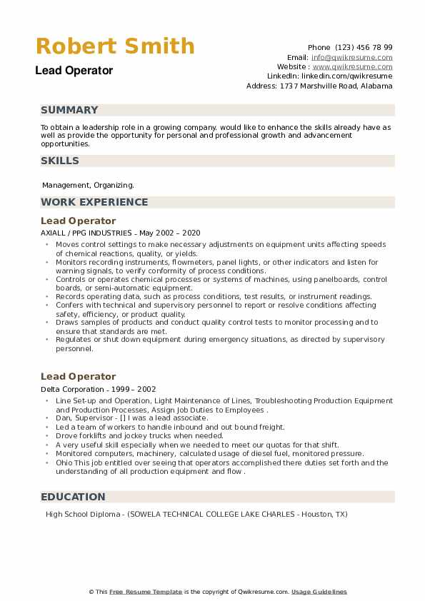 Lead Operator Resume example