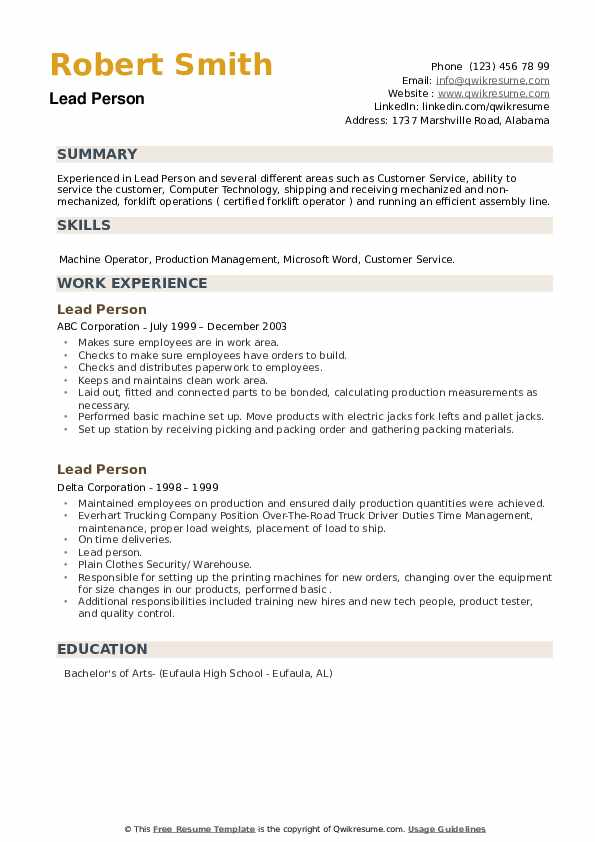 Lead Person Resume example