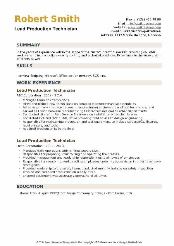 Lead Production Technician Resume example