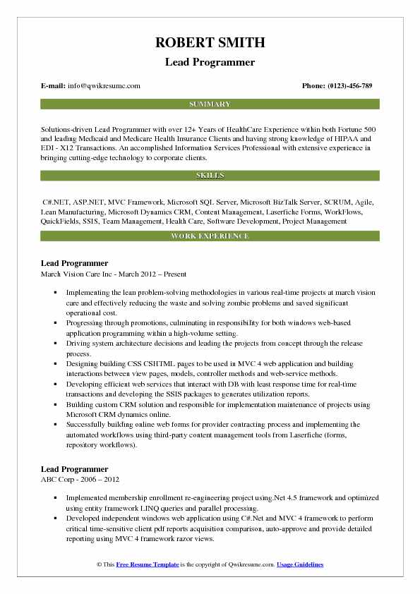 Lead Programmer Resume Template