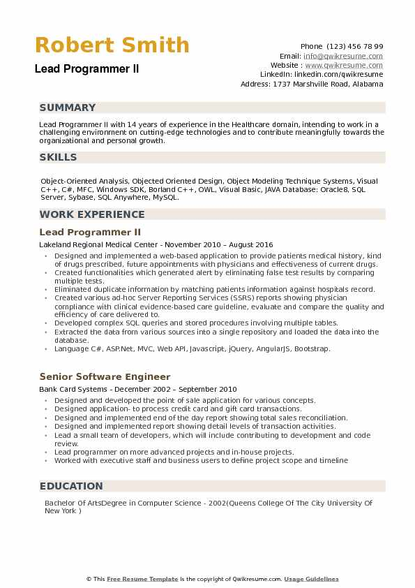 Lead Programmer Resume example