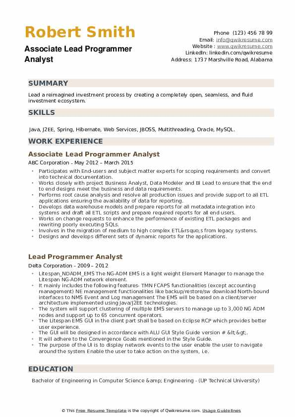 Lead Programmer Analyst Resume example
