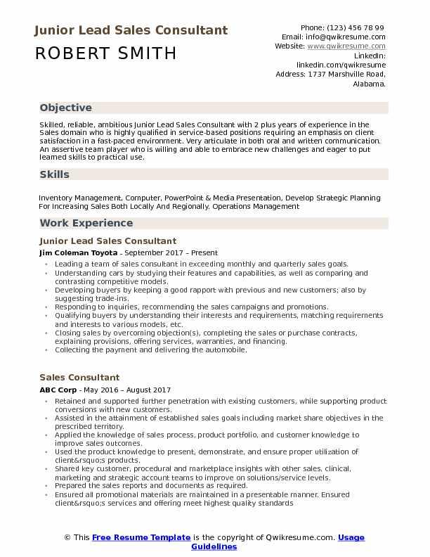 Junior Lead Sales Consultant Resume Example