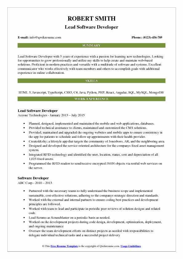 Lead Software Developer Resume Sample
